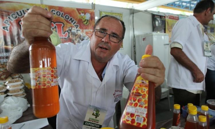 Apicultura rondoniense fatura R$ 2,5 milhões por ano