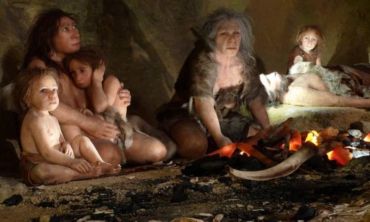 Neandertais belgas praticavam canibalismo há 40.000 anos