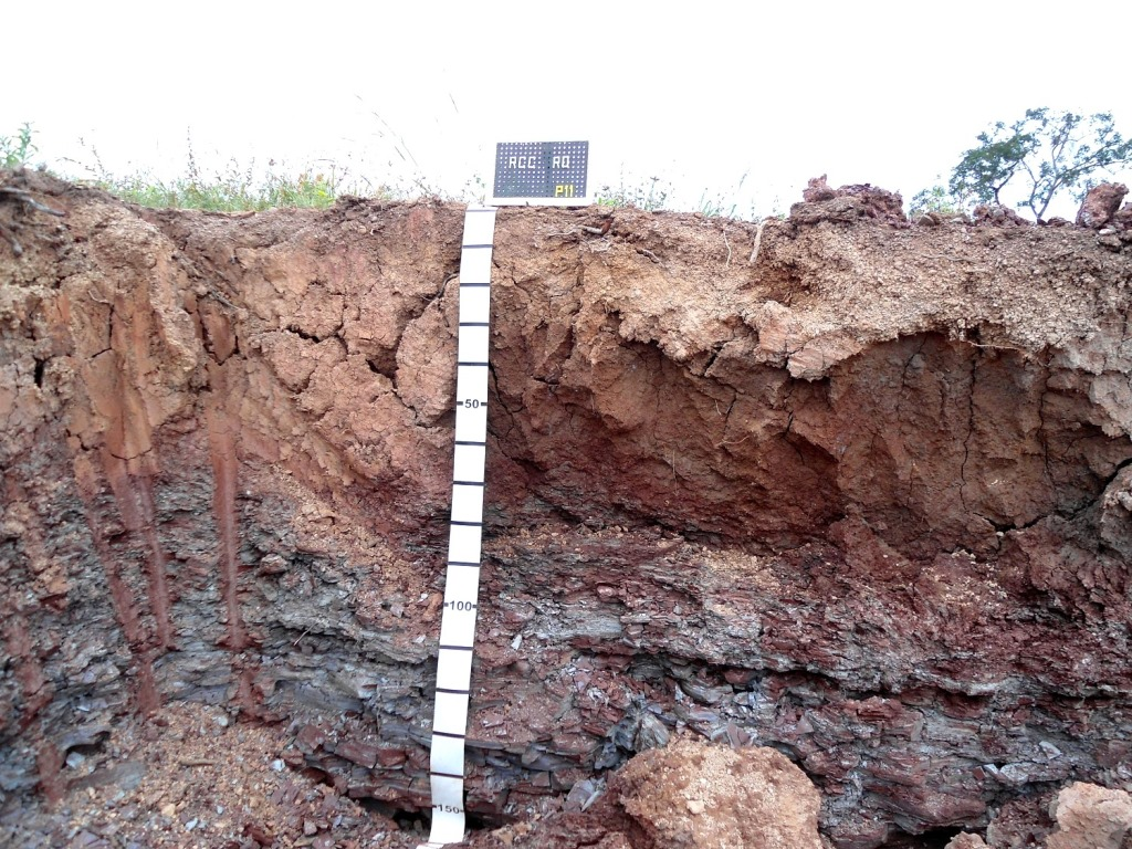Solos-proximo-a-Pimenta-Bueno-sobre-rocha-sedimentar-argilito_Foto-Paulo-Wadt.jpg