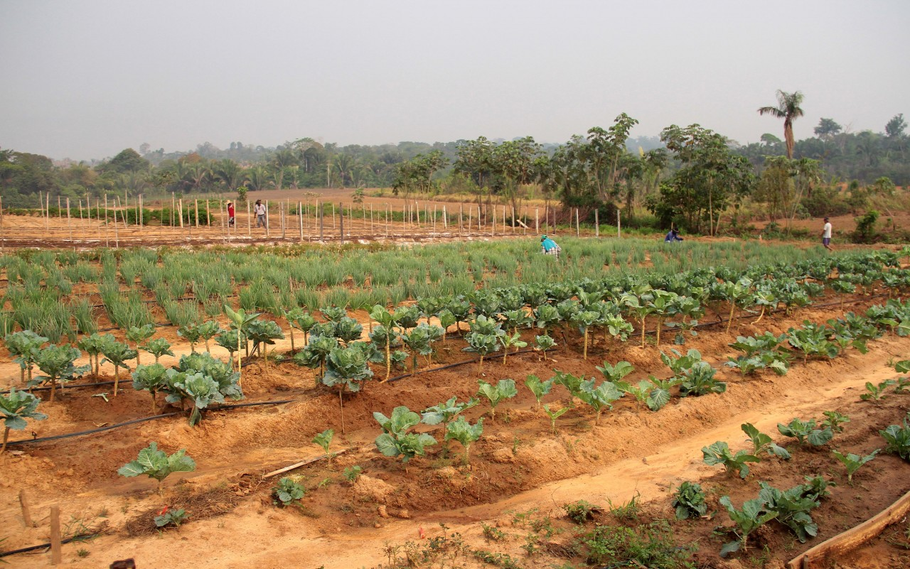 Fazenda-Futuro_25.08.16_Foto_Daiane-Mendonça-30-1.jpg