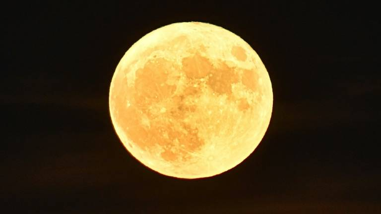 Lua-141116.jpg