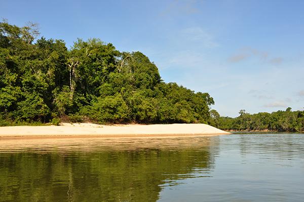 Parque-Estadual-de-Corumbiara-Foto-Rosinaldo-Machado-4.jpg
