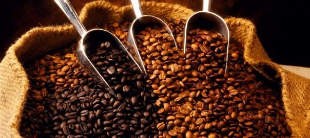 cafe_despolpado_foto_renata_silva.jpg