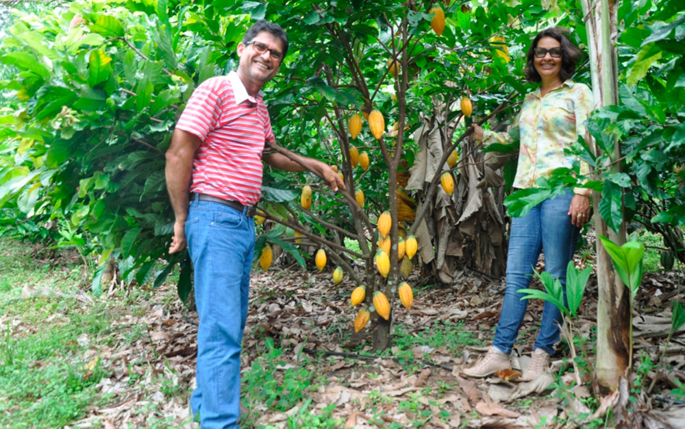 Rondonia-podera-ter-1-agroindustria-de-chocolate-artesanal_005-Foto-RUL-Hudson-Calandrelli.jpg