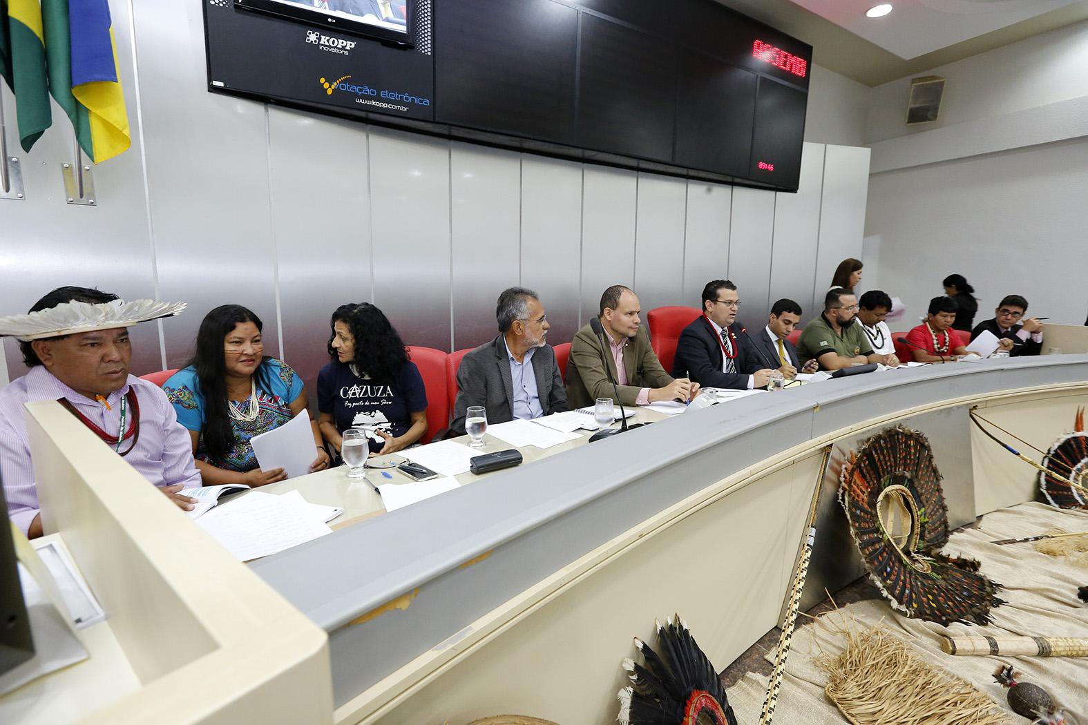 ezequiel-junior-preside-audiencia-publica-para-analisar-situacao-dos-povos-indigenas-de-rondonia.jpg.jpg